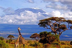 Отдых с детьми в Танзании